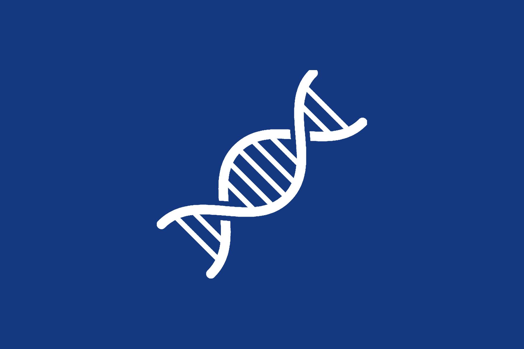 Logo2d16